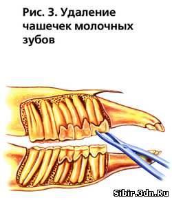 2143347.jpg